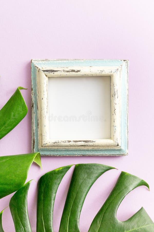 Blauw en wit leeg fotokader en tropisch bladerenmodel op purpere achtergrond reis concept tekst royalty-vrije stock afbeeldingen