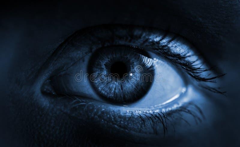 Blauw irisoog Lage diepte van gebied royalty-vrije stock fotografie
