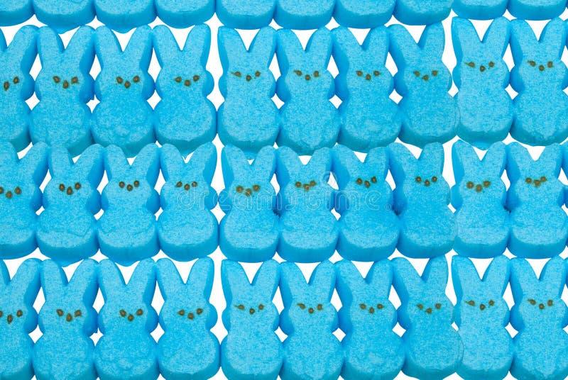 Blauw konijntjesPasen suikergoed royalty-vrije stock afbeelding