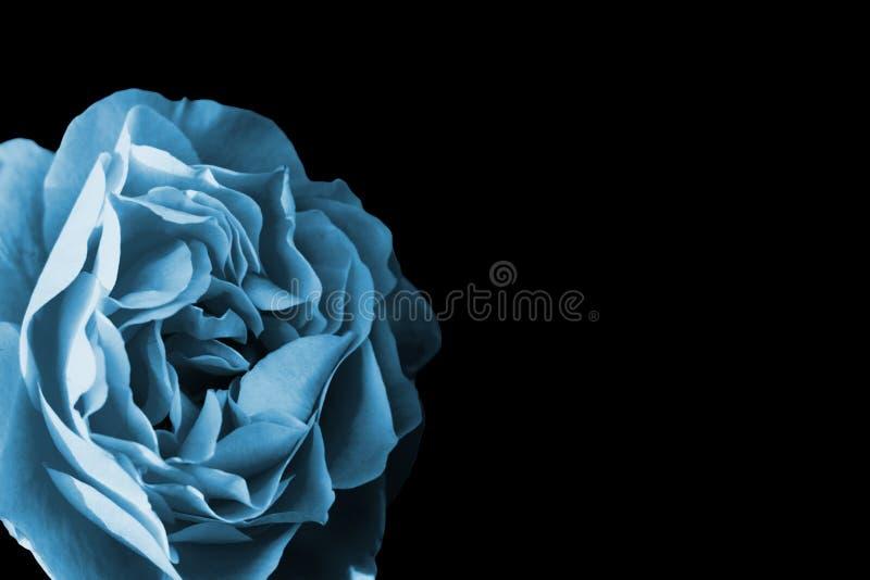 Blauw nam toe stock afbeelding