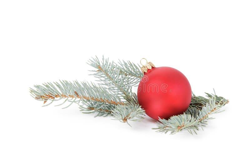 Blauw net takje met Kerstmisbal stock afbeelding