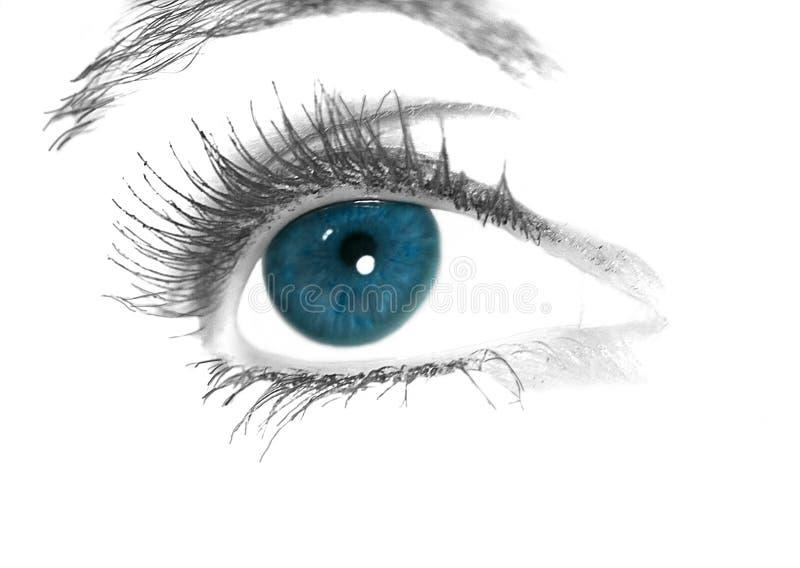Blauw oog royalty-vrije stock afbeelding