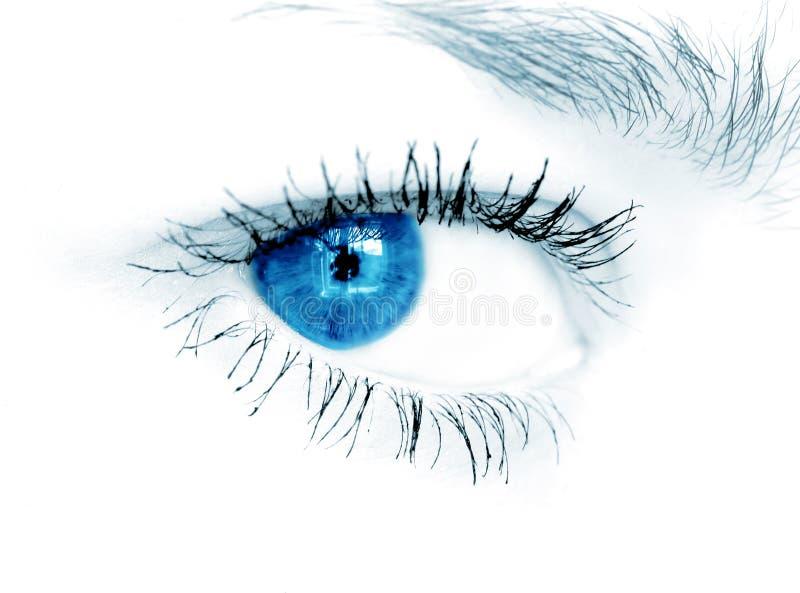 Blauw oog op witte achtergrond royalty-vrije stock afbeeldingen