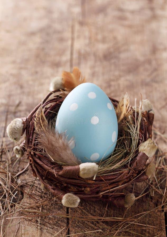Blauw paasei in nest royalty-vrije stock foto's