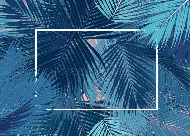 Blauw van de Palmen transparant leeg kaart concept als achtergrond royalty-vrije illustratie