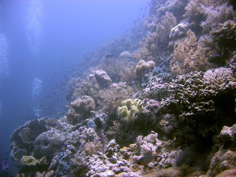 Blauw Water royalty-vrije stock fotografie