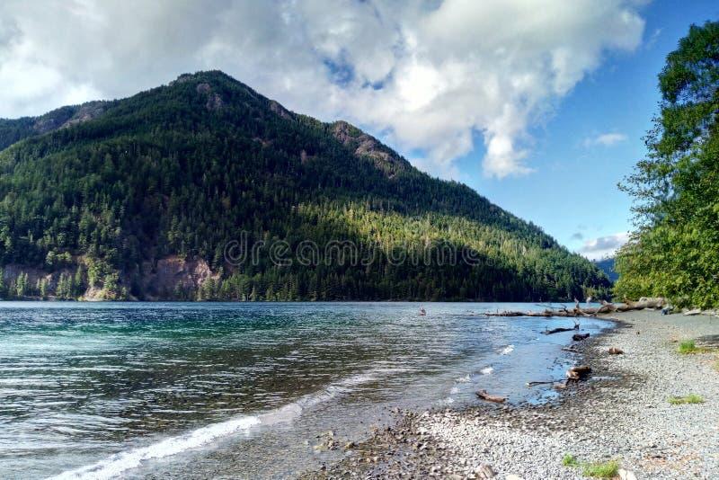 Blauw water in een bosmeer met pijnboombomen royalty-vrije stock afbeeldingen
