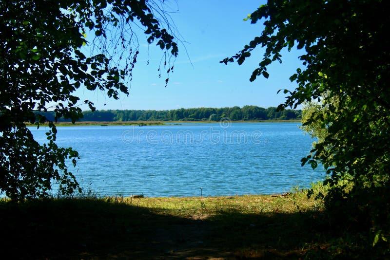 Blauw water in een bosmeer met pijnboombomen royalty-vrije stock fotografie