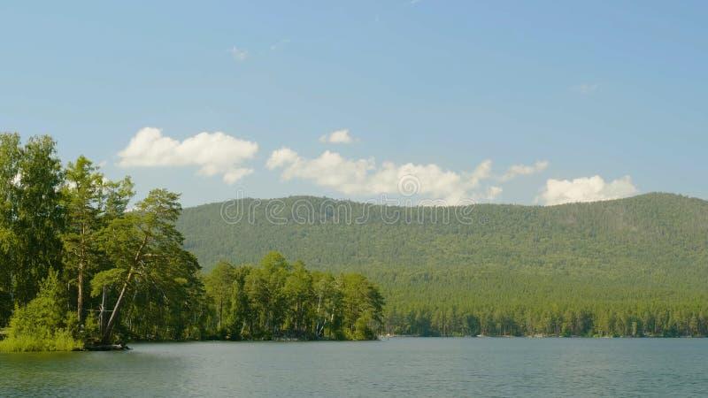 Blauw water in een bosmeer met pijnboombomen Mooi meer en groen bos stock afbeelding