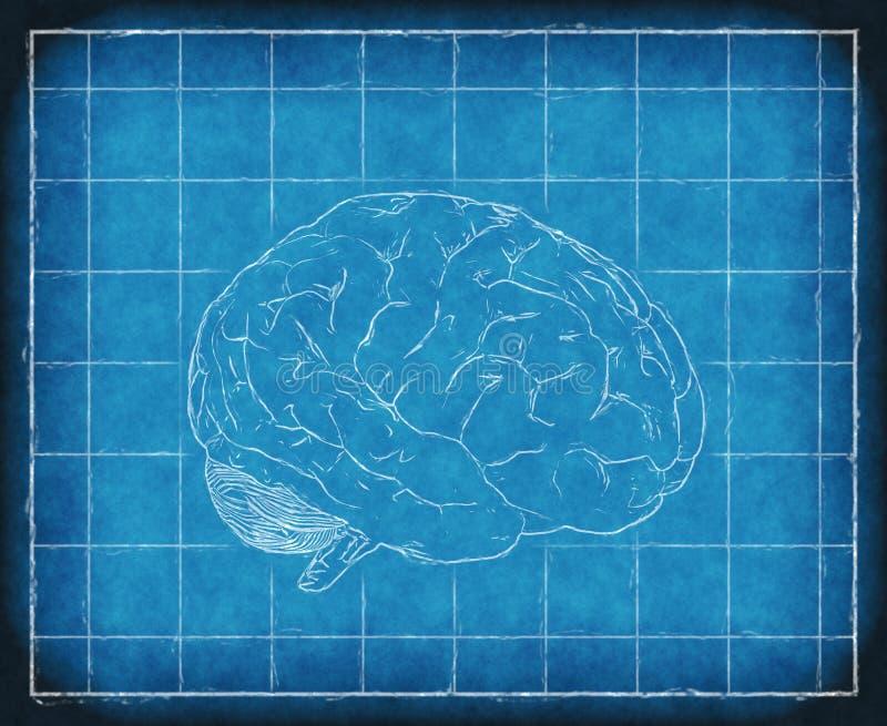 Blauwdruk van Menselijke Consiousness stock illustratie