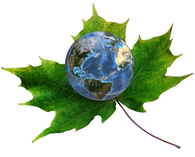 Blauwe Aarde op groen esdoornblad stock illustratie