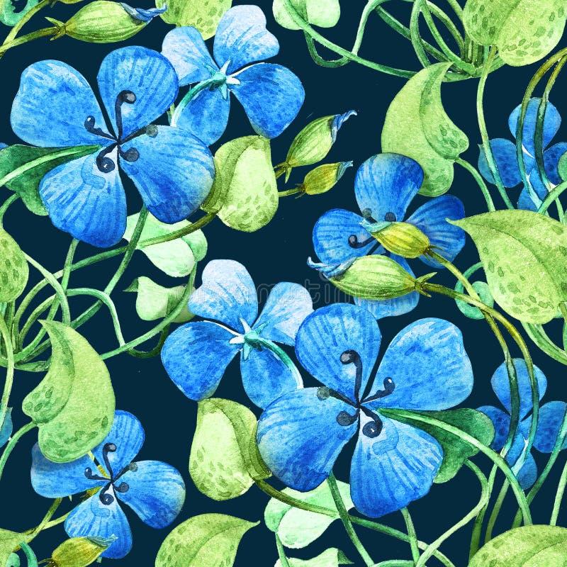 Blauwe Bloem Achtergrond van het waterverf de bloemen naadloze patroon vector illustratie