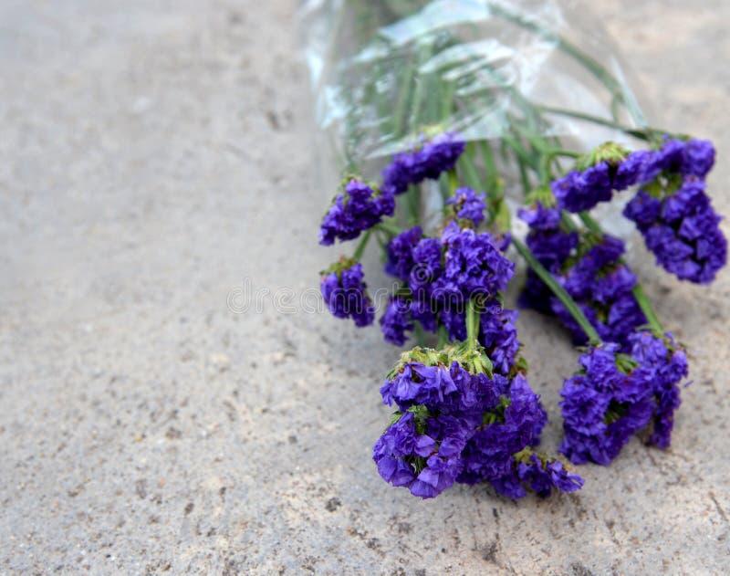 Blauwe Bloemen royalty-vrije stock foto's