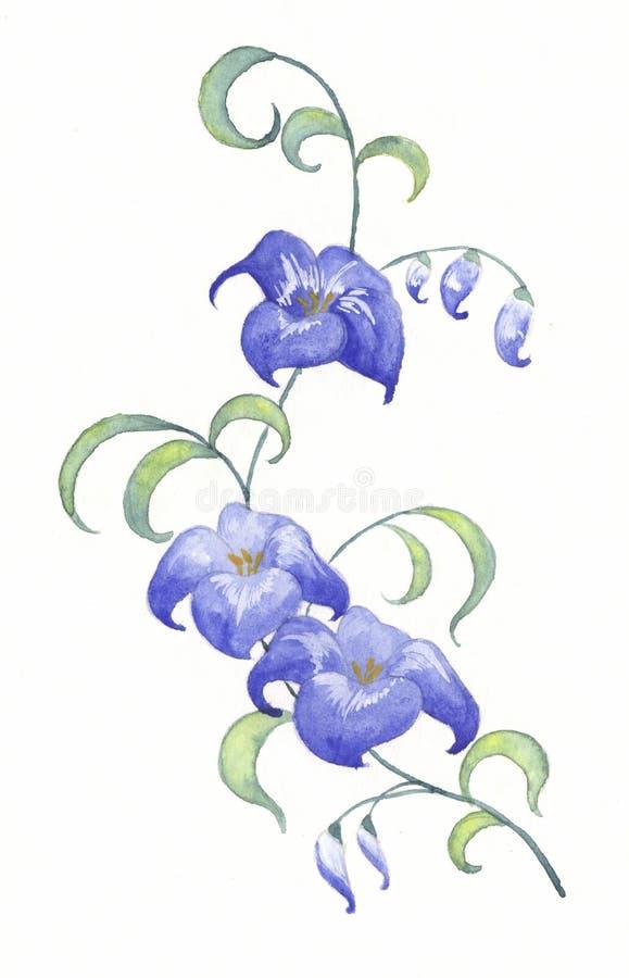 Blauwe bloemen royalty-vrije illustratie