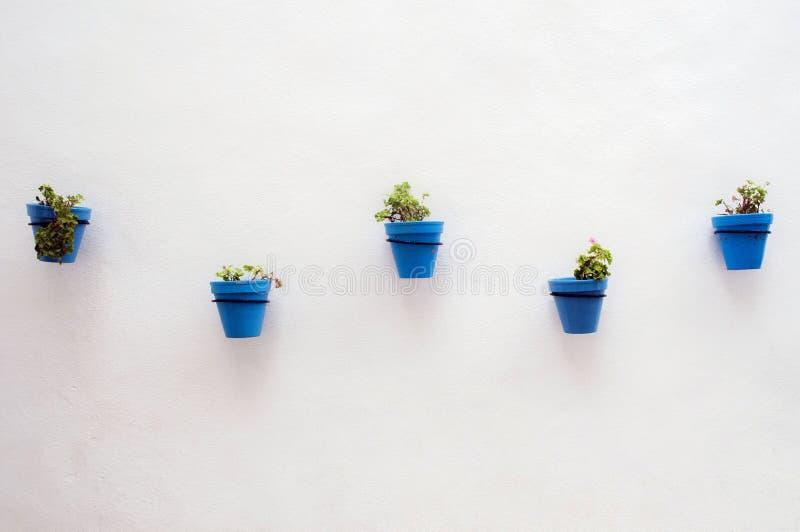 Blauwe bloempotten in Spanje stock fotografie