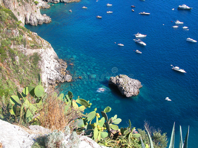 Blauwe daling Capri royalty-vrije stock foto