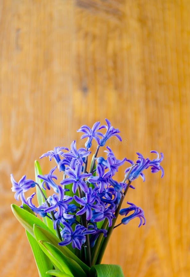 Blauwe de lentebloemen met groene bladeren op een oude houten backgroun stock afbeeldingen