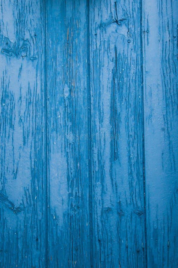 Blauwe deur vector illustratie