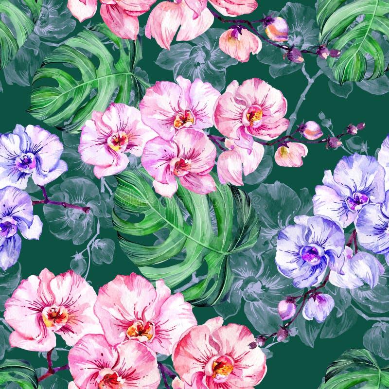 Blauwe en roze orchideebloemen en grote monsterabladeren op donkergroene achtergrond Naadloos BloemenPatroon Het Schilderen van d stock illustratie