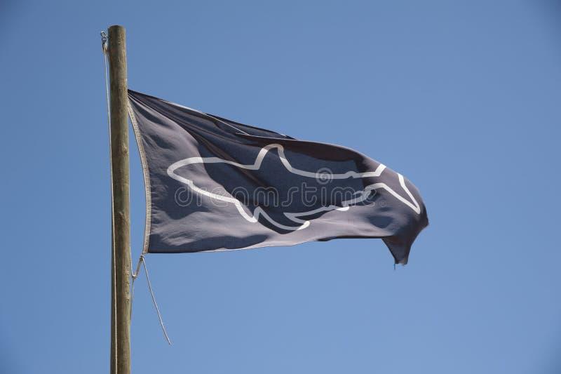 Blauwe en witte haai spotter vlag stock afbeeldingen