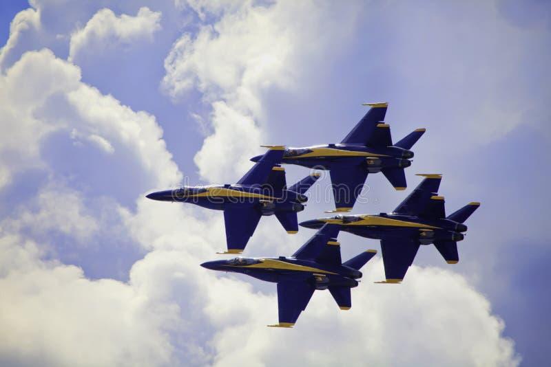 Blauwe Engelen tijdens de vlucht stock afbeeldingen