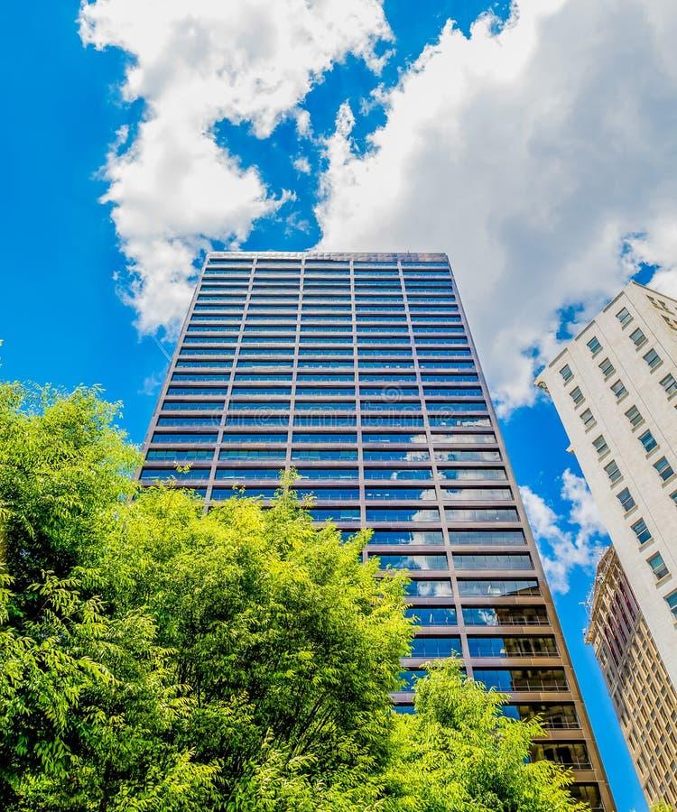 Blauwe Glastoren uit Groene Bomen royalty-vrije stock foto's