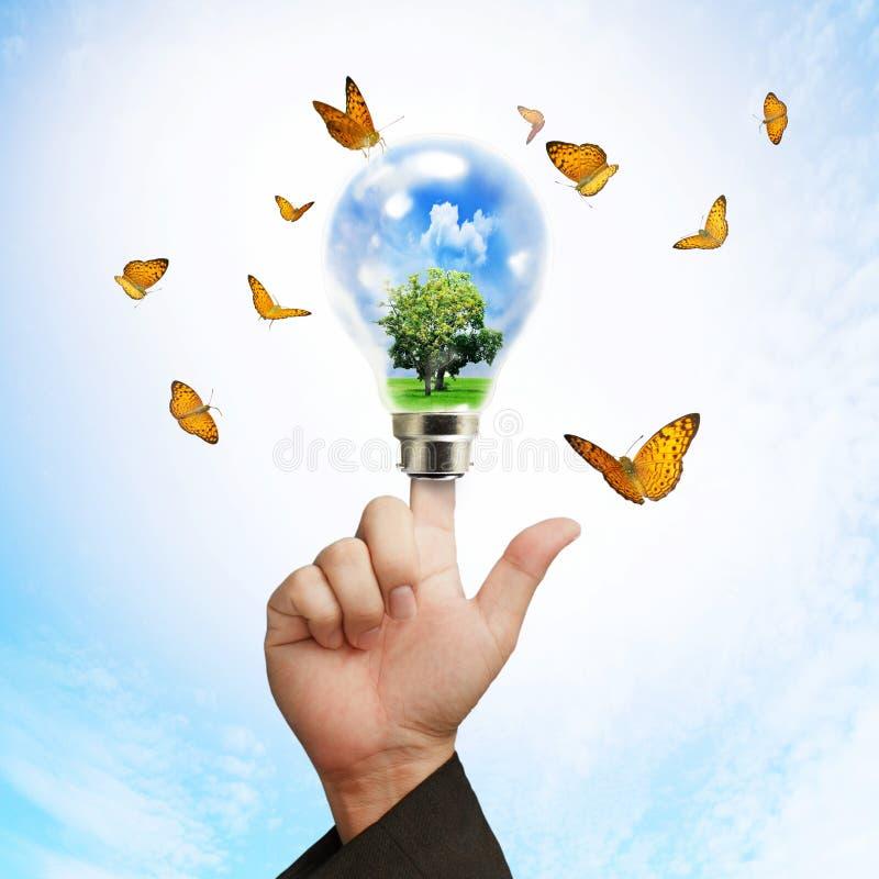 Blauwe gloeilamp en vlinders royalty-vrije stock foto