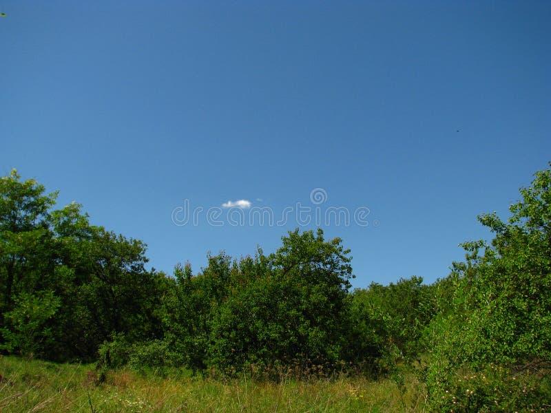 Blauwe, groene en eenzame wolk stock fotografie