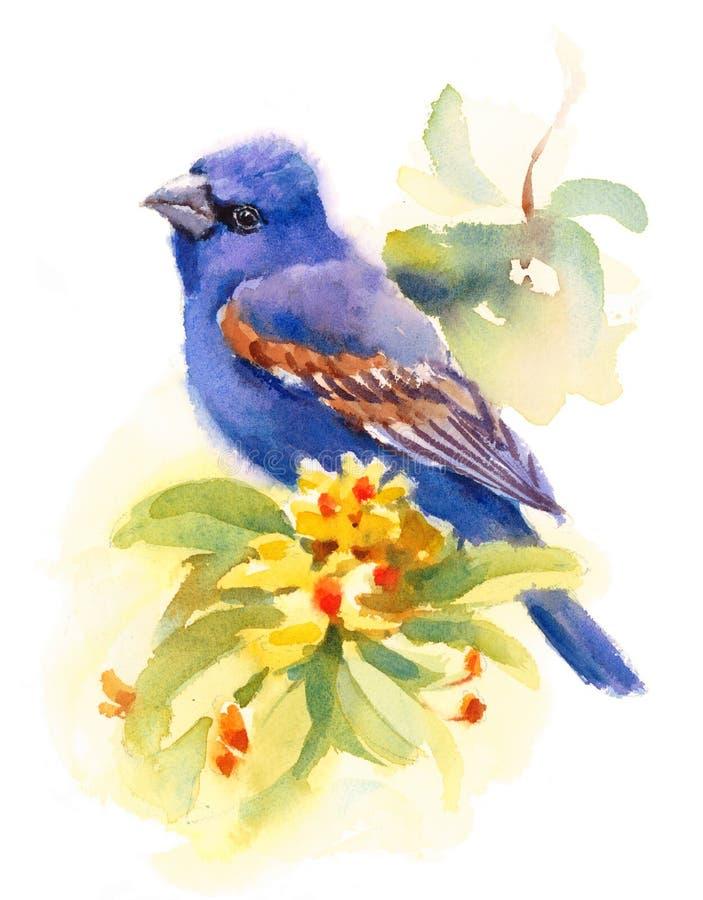 Blauwe Grosbeak Vogel op de tak met Geschilderde de Hand van de de Dalingsillustratie van de bloemenwaterverf royalty-vrije illustratie