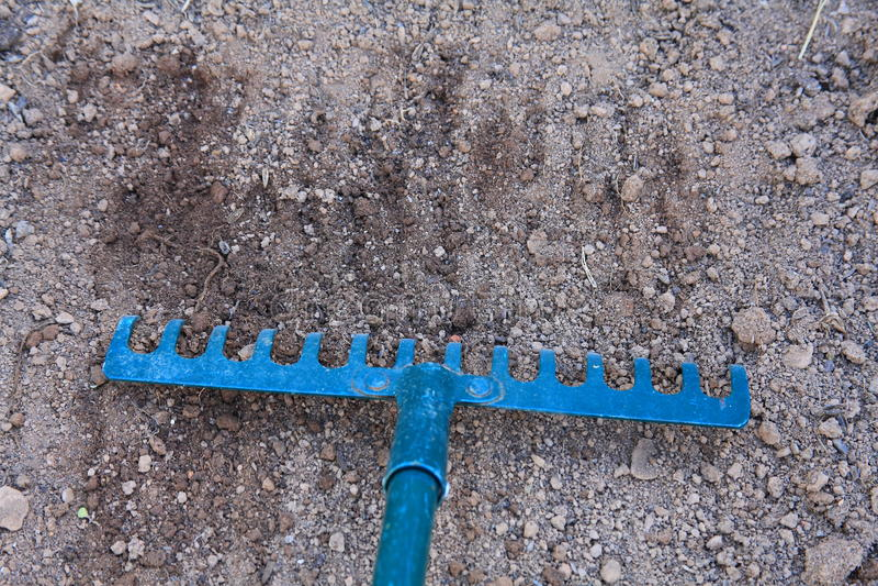 Blauwe hark in droge grond stock foto's