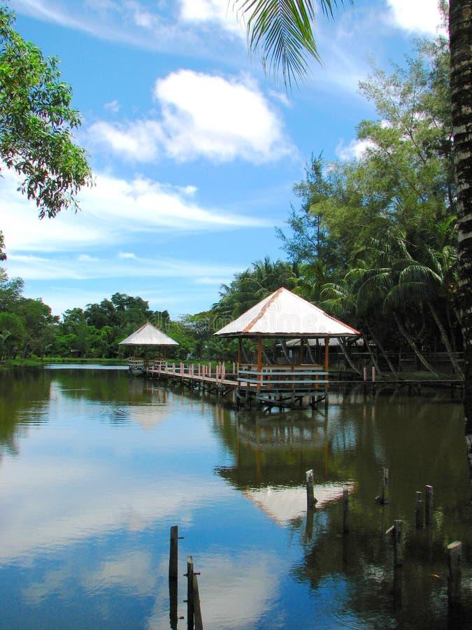 Blauwe hemel bij het Landbouwbedrijf van de Krokodil Miri, Borneo, Maleisië stock afbeeldingen