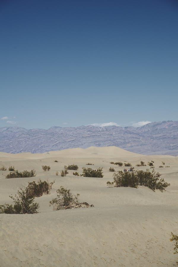 Blauwe hemel en bergen achter kleine zandduinen stock fotografie