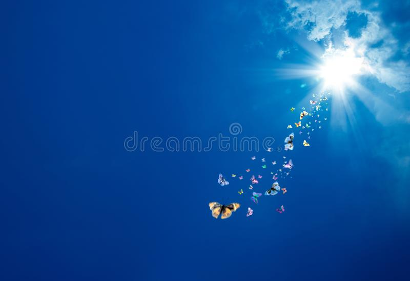 blauwe hemel en vlinders royalty-vrije stock afbeeldingen