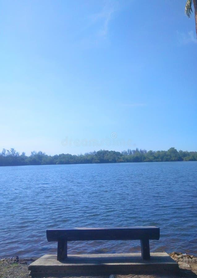Blauwe hemel met kokospalm royalty-vrije stock afbeelding