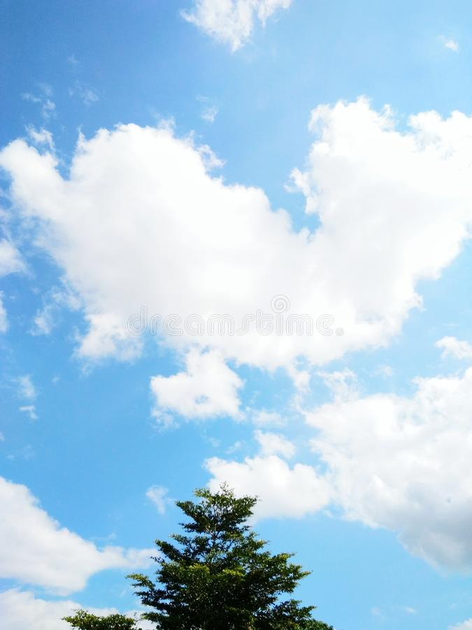 blauwe hemel met weinig boom royalty-vrije stock fotografie