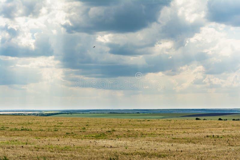 Blauwe hemel met wolken, vallei met vernietigd gras en groene vegetatie, de zomer bewolkte dag, aardlandschap royalty-vrije stock afbeelding