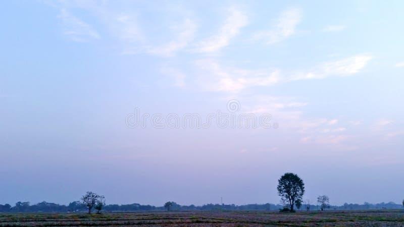 Blauwe hemel Natuurlijke omgeving in de ochtend in Thailand Royalievrije voorraadfoto royalty-vrije stock afbeelding