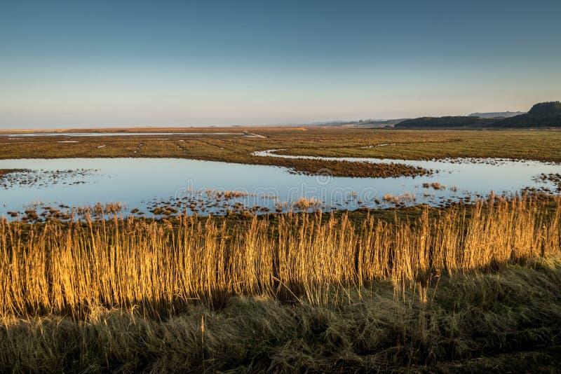 Blauwe hemel op een zonnige dag in Noord-Norfolk, Engeland stock foto's
