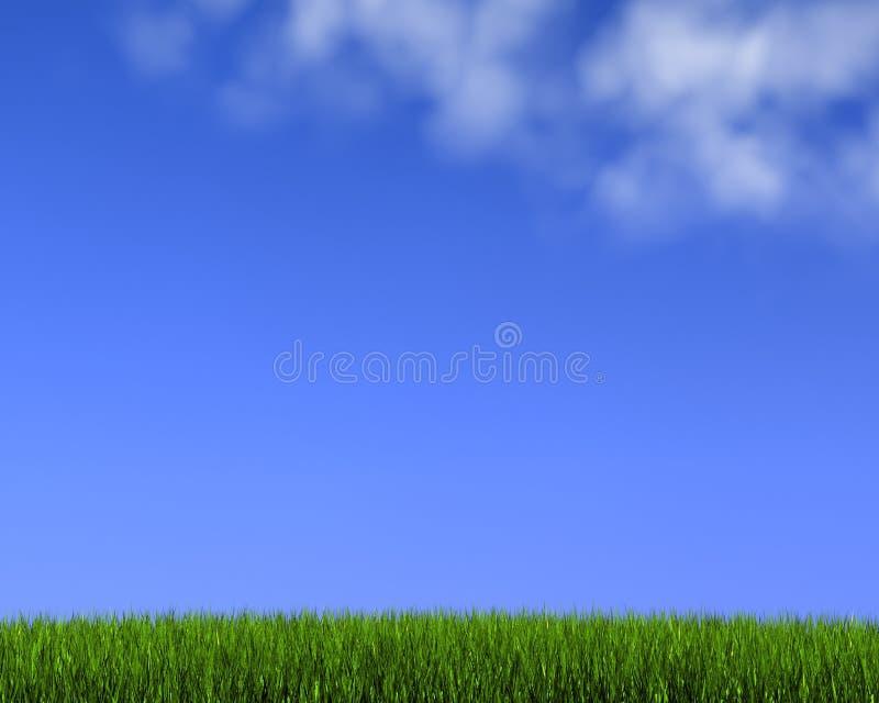 Blauwe hemel op gras stock illustratie