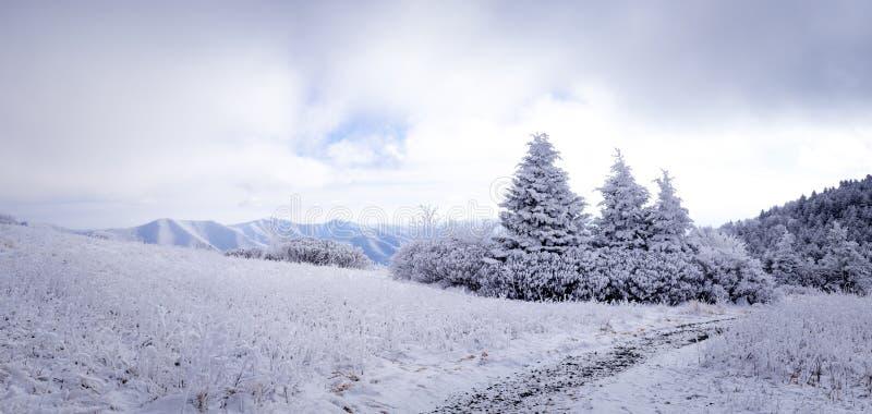 Blauwe hemel over Appalachian Sleep 2 royalty-vrije stock foto's