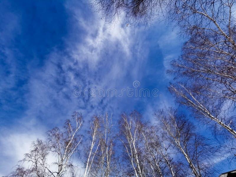 Blauwe Hemel van Meer Baikal stock foto's