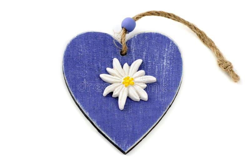 Blauwe houten hartvorm met eidelweissbloem stock foto