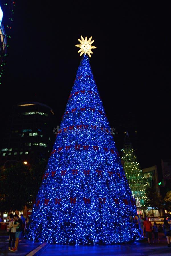 Blauwe Kerstboom stock afbeelding