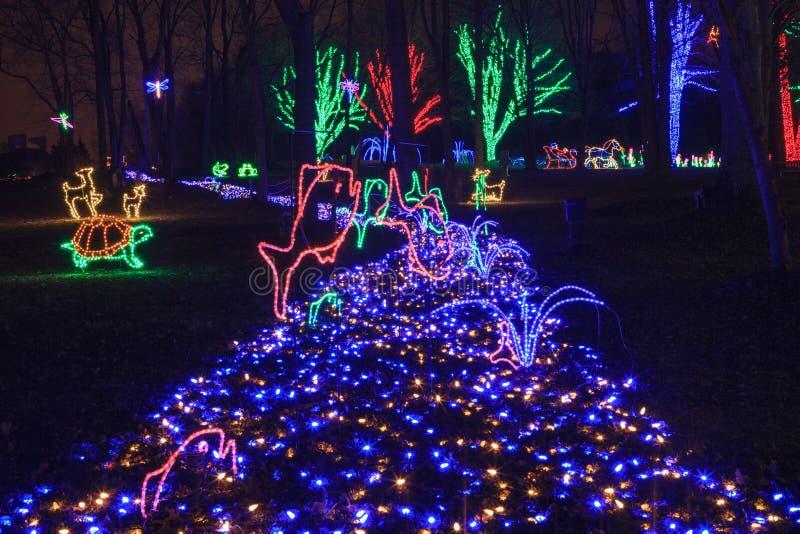 Blauwe Kerstmis bij Regionaal Park royalty-vrije stock afbeeldingen