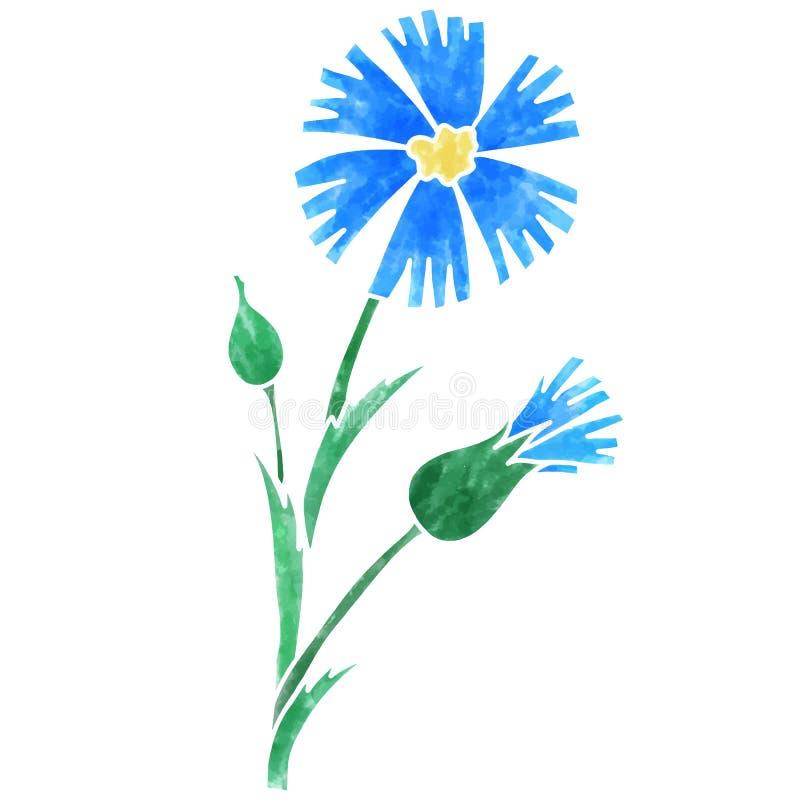 Blauwe korenbloem vectorillustratie met waterverftextuur royalty-vrije illustratie