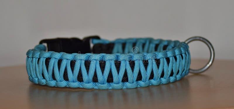 blauwe kraag uit het paracord voor elk hondenras stock fotografie