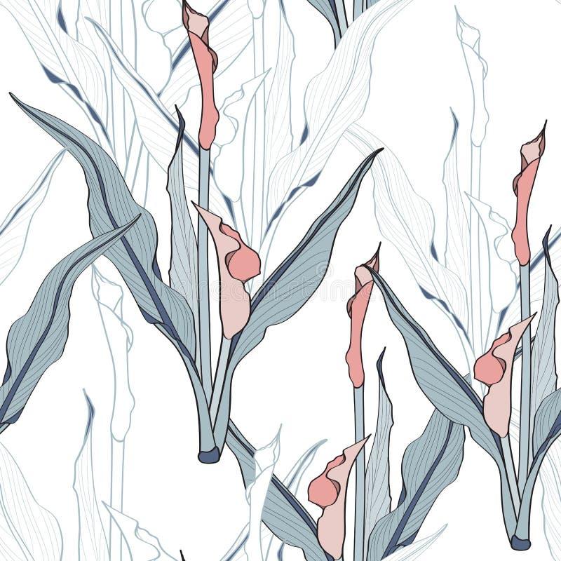 Blauwe lijncallas leliebloemen met exotische bladeren, witte achtergrond royalty-vrije illustratie