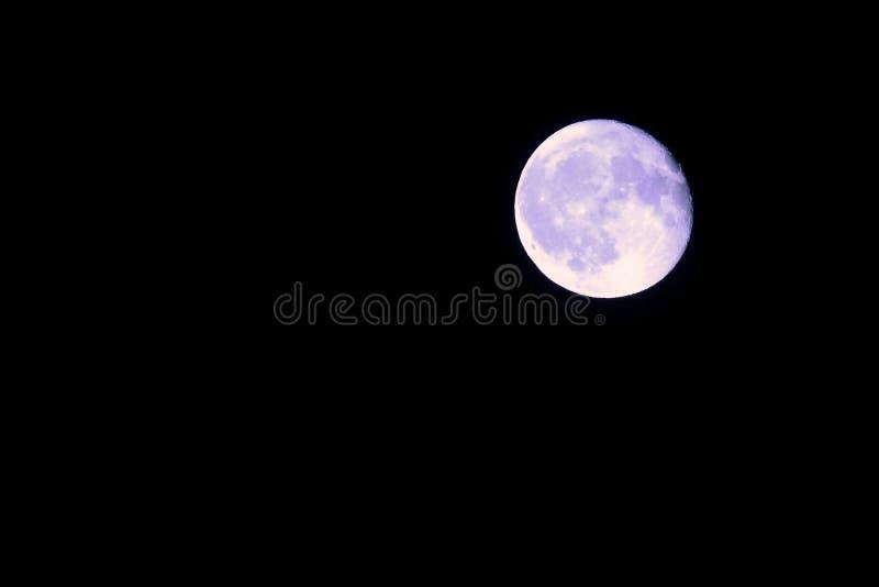 Blauwe maan stock foto