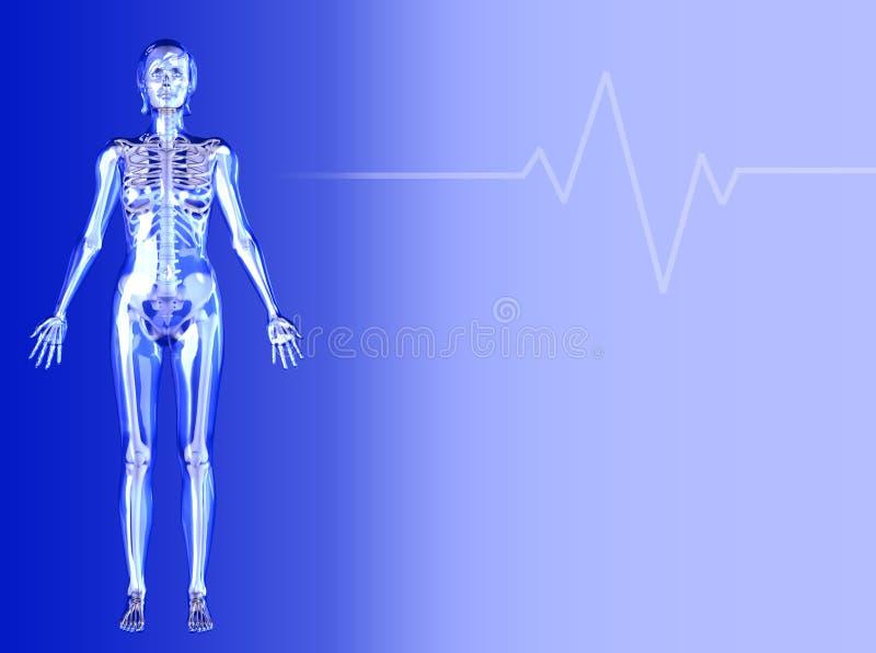 Blauwe Medische Achtergrond - Vrouwelijk Cijfer royalty-vrije illustratie