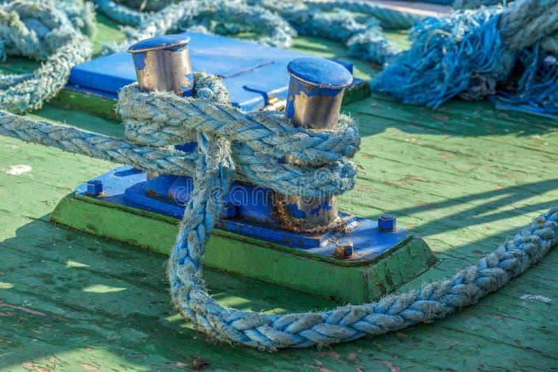 Blauwe meertrossen royalty-vrije stock foto's